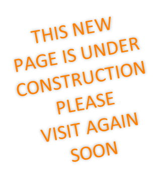 THIS NEW PAGE IS UNDER CONSTRUCTION PLEASE  VISIT AGAIN SOON